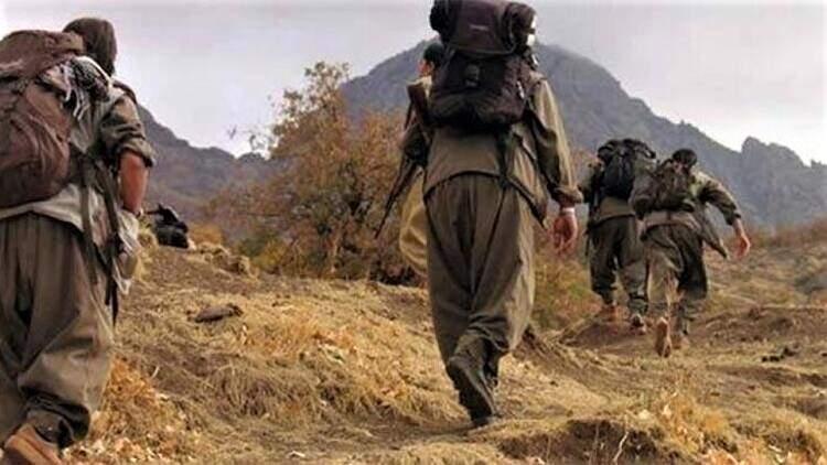 PKK'LI 5 ÖRGÜT MENSUBU İKNA YOLUYLA TESLİM OLDU