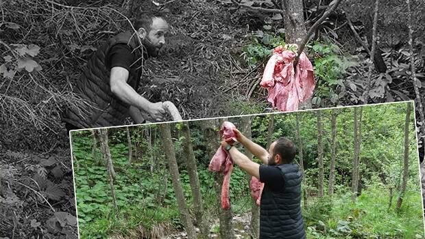 Son dakika haberleri: Trabzon'da ağaçta sakatat çözümü.. Görenler bir daha bakıyor