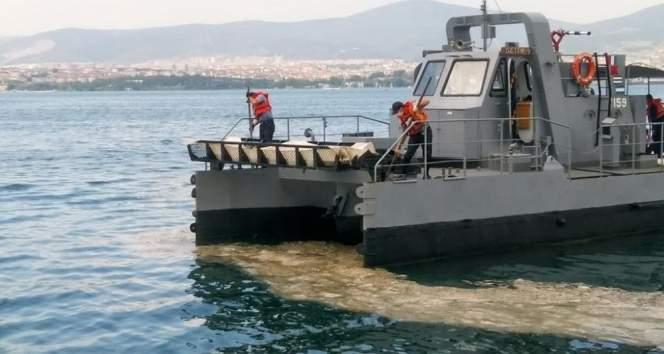MSB: 'Gölcük Poyraz Limanı'nda müsilaj temizleme faaliyetlerine başlanmıştır'
