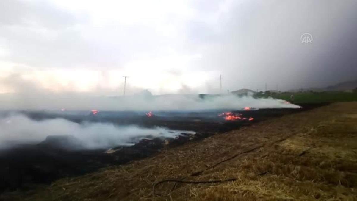 Ödemiş te ekin tarlasında çıkan yangın hasara neden oldu