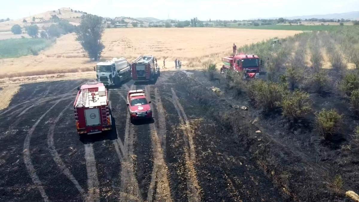 Son dakika haberleri! İzmir de büyük arazi yangını: 40 dönüm arazi kül oldu