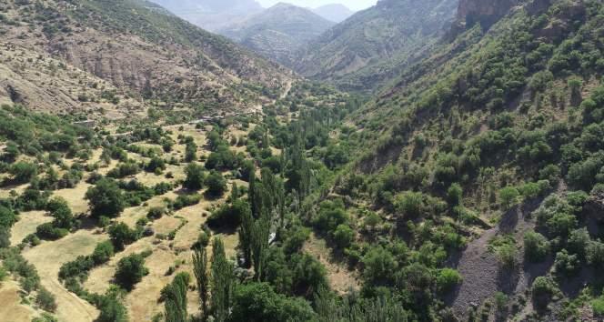 Terör bitti köylere geri dönüşler hızlandı