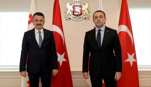 Türkiye ile Gürcistan arasında yeni iş birliği anlaşması