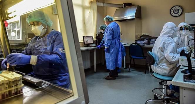 Türkiye'de son 24 saatte 5.904 koronavirüs vakası tespit edildi