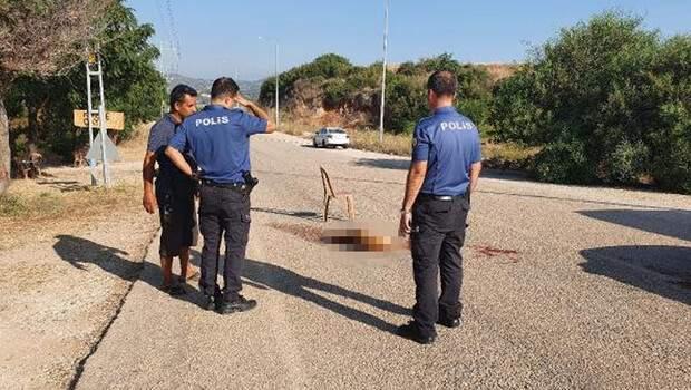 Adana'da korkunç olay! Sokak köpeğini av tüfeğiyle vurup öldürdü