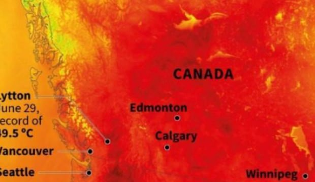 Aşırı sıcaklar 808 kişinin hayatını kaybetmesine neden oldu