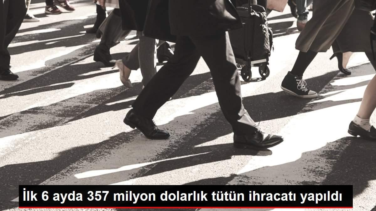 İlk 6 ayda 357 milyon dolarlık tütün ihracatı yapıldı
