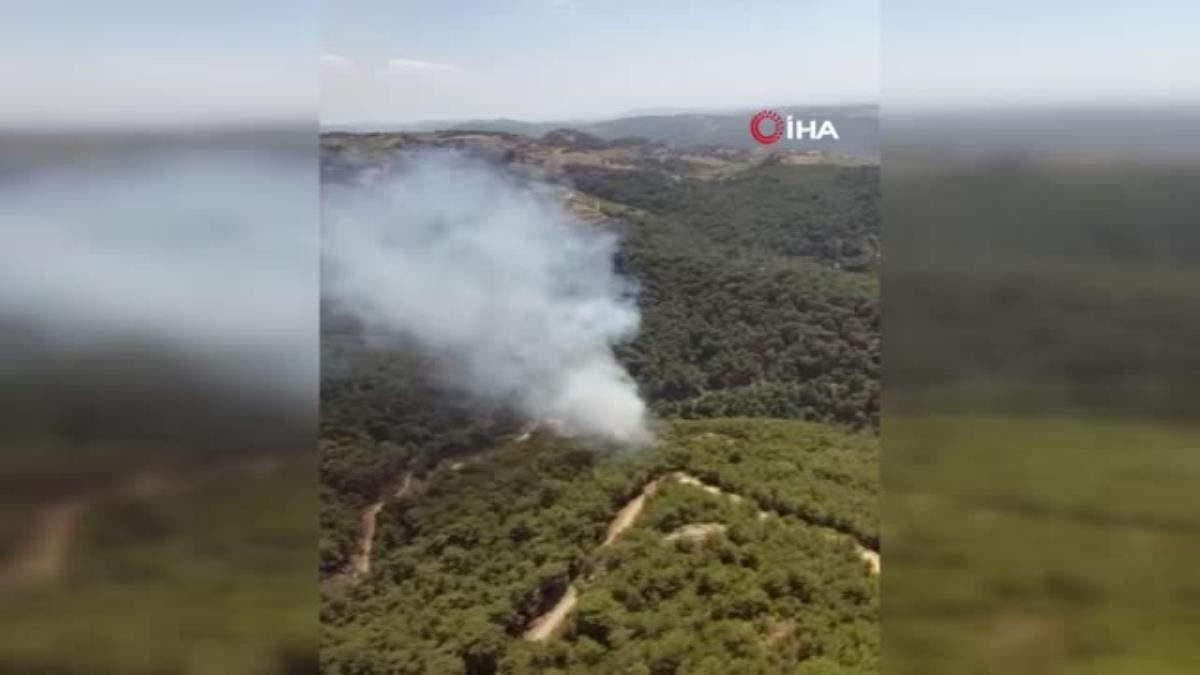 İzmir de ormanlık alanda çıkan yangın kontrol altında