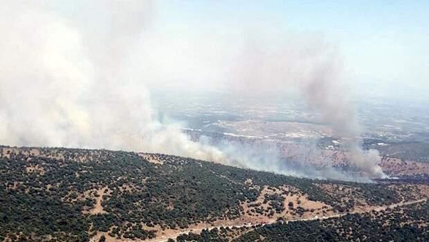 Manisa'da makilik yangını