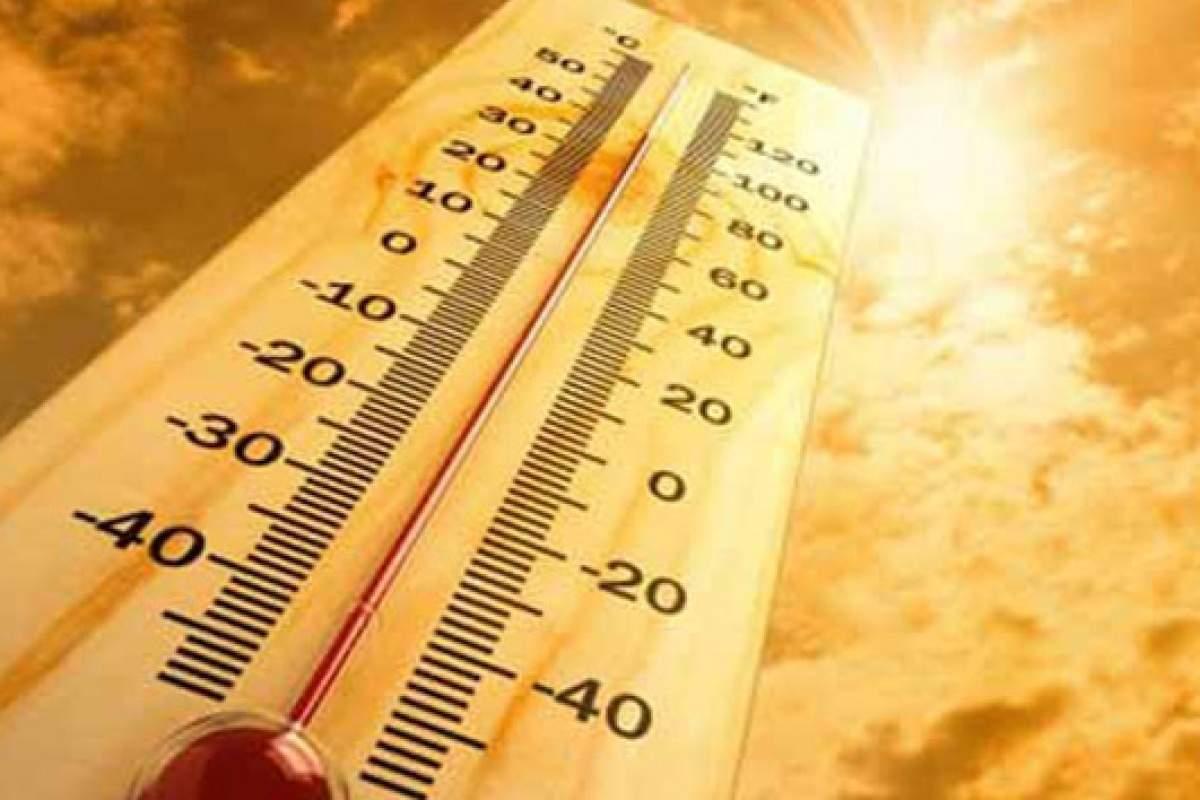 Polonya'da aşırı sıcaklardan 157 kişi hayatını kaybetti