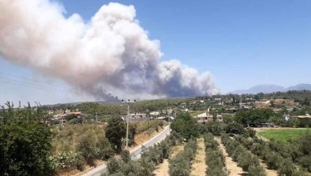 Son dakika… Antalya Manavgat'ta orman yangını