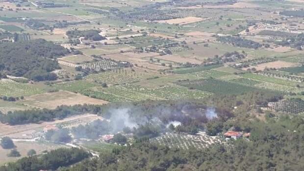 Son dakika… Bozcaada'da orman yangını