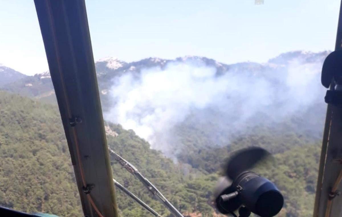 Son dakika haber: İzmir de ormanlık alanda çıkan yangın kontrol altında