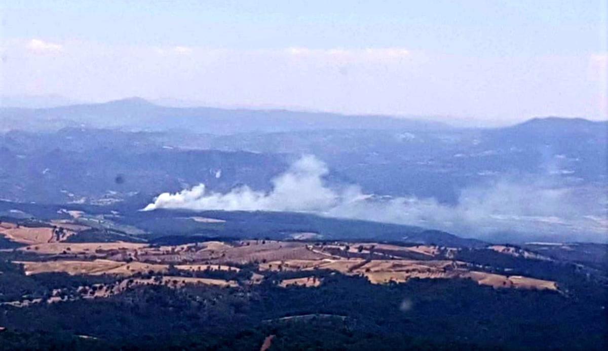 Son dakika haberi… Manisa da orman yangını kontrol altına alındı