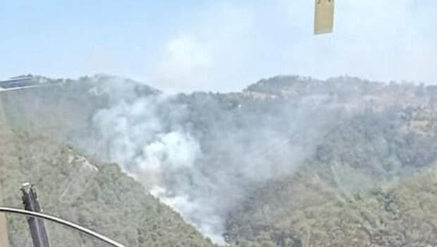 Son dakika… İzmir Güzelbahçe'de orman yangını