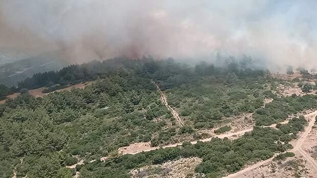 Son dakika… İzmir Karaburun'da yangın