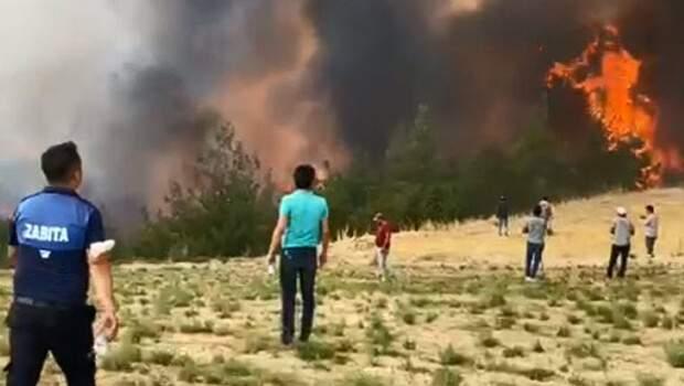 Son dakika: Denizli'de orman yangını paniği! Herkes yardıma koştu