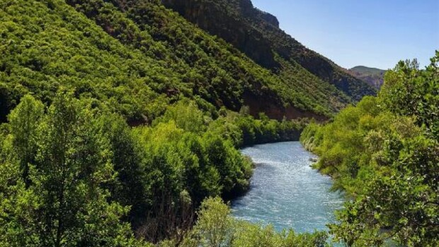 Tunceli'de 30 gün boyunca ormanlara giriş yasak