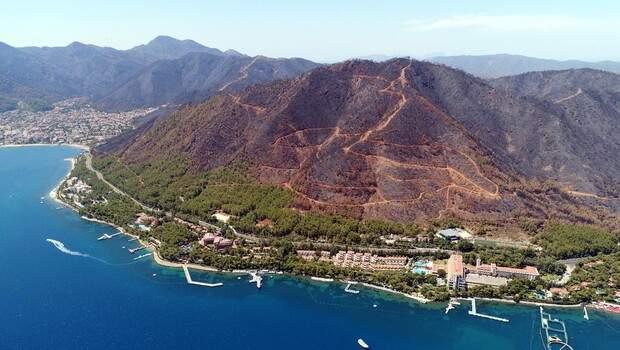 Muğla Orman Bölge Müdürü: 15 günlük yangınlarda 52 bin hektar alan zarar gördü