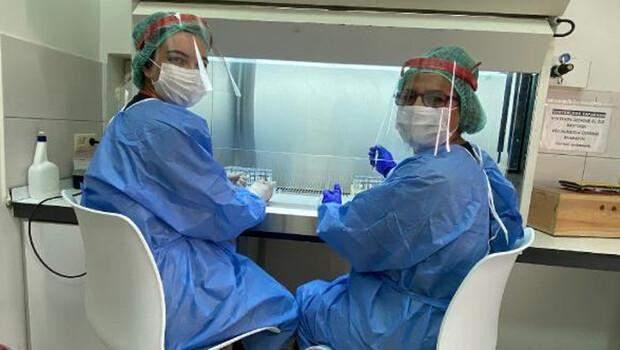 PCR zorunluluğu, Covid-19 laboratuvarında numune sayısını artırdı